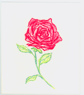 Wes Sod Greeting Card - Rose