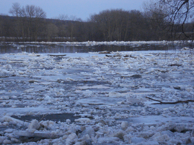 Ice flow on the Mississippi River north of Highway 10 bridge near Little Falls, March 17, 2010.
