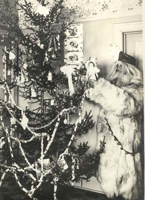 Photo: Christmas in the Z. N. Barnes Home, Little Falls, MN, c. 1900. The camera has captured Father Christmas leaving a doll on the tree for Mildred, daughter of Mr. and Mrs. Z. N. Barnes. Father Christmas is portrayed by Mildreds Uncle Rob, Rob McCollough. Photo by Z. N. Barnes from the Morrison County Historical Society collections.